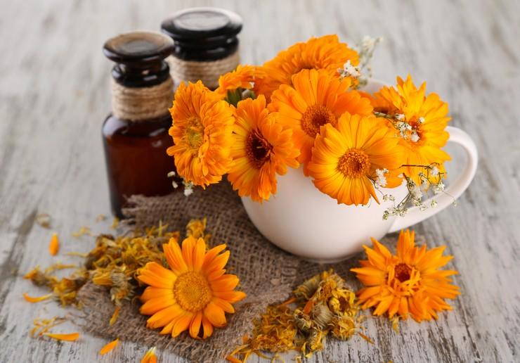 Польза цветочных масел для волос